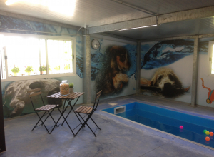 piscina_IMG_2173