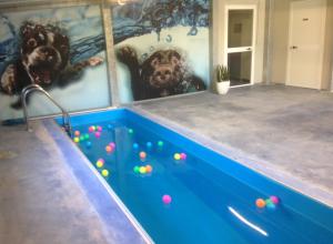 piscina_IMG_2180